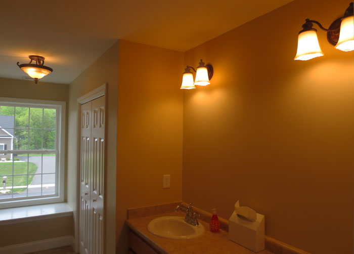 Project Home - Bathroom Vanity Lights & Flush Mount